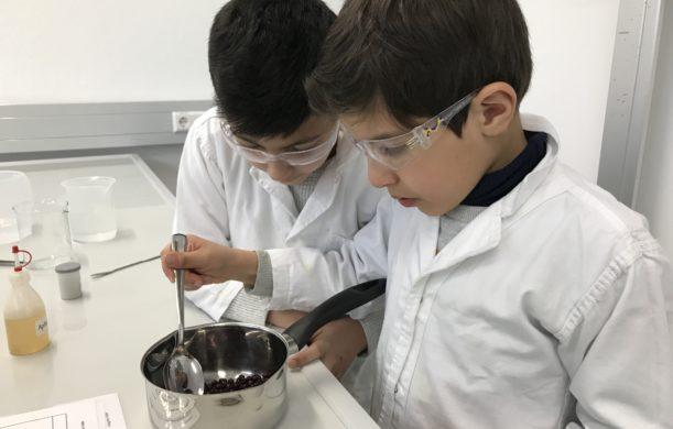Besuch bei den Chemie-Wochen der Zukunftsakademie